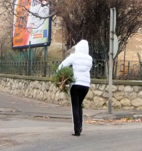 Carrying Her Christmas Tree