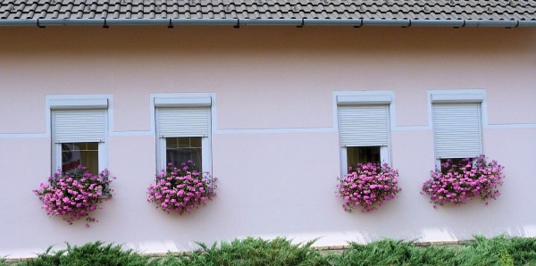 Flower Boxes with Pink Flowers