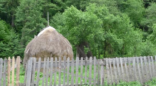 Romania - Haystack