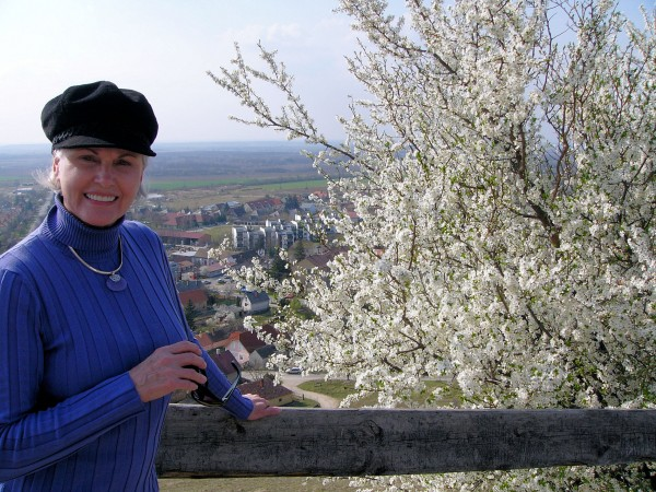 View from Sümeg Castle in Spring